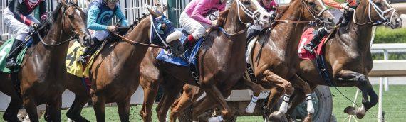 Trenton Announcing Horse Racing Subsidies